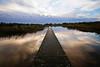 Water reflections (Dannis van der Heiden) Tags: water grass sky lake tree serene nature park leusden schammer amersfoort relection clouds pier wood wideangle slta58 tamron1024mm netherlands
