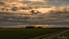 Last October Sunrise (BraCom (Bram)) Tags: bracom cloud wolk akker field boerderij boom dijk dike ditch sloot farm ochtend pad path polder sunrise tree zonsopkomst autumn herfst morning sunrays zonnestralen dirksland goereeoverflakkee southholland zuidholland nederland netherlands 169 widescreen bramvanbroekhoven