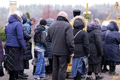 66. Блгв. кн. Александра Невского в Богородичном 06.12.2017