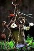 Luz Olvidado - Forgotten Light (Konny :-))) Tags: lantern laterne lanterna lanterne linterna lyhty spider spinne ragno kehrääjä araña dryspider spiderskeleton spinnenskelett