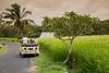 SAFARI BALI (Chris M. S) Tags: bali safari tour indonesia 6d canon
