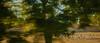 DSC_2127 (andrey.salikov) Tags: 180550mmf3556 fes fès magnifique nikond60 atrevida beautiful buenisima colour colourfulplaces dreamscene europe fantastic fantasticcolors fantasticplaces foto free goodatmosphere gorgeous harmonyday2017 harmonyvision impressive light lovely moodshot nice niceday niceimage niceplace ottimo peacefulmind photo places relaxart scenery sensual sensualstreet streetlight stunning superbshots tourism travel trip wonderful город марокко фас фес отпуск туризм