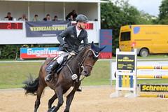 _MG_6247 (dreiwn) Tags: ridingarena reitturnier reiten reitplatz reitverein reitsport ridingclub equestrian showjumping springreiten horse horseback horseriding horseshow pferdesport pferd pony pferde tamronsp70200f28divcusd
