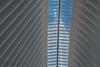 (RaffaLUCE) Tags: oculus freedomtower worldtradecenter architecture nyc manhattan fujixt2