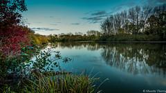 Quand la nuit s'invite (musette thierry) Tags: landscape paysage nuit automne nature couleur nikon musette thierry france europe pasdecalais nord nordpasdecalais