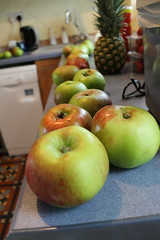 All lined up in a row (daveandlyn1) Tags: apples bramleyapples fruit dof iii f3556 efs1855mm 1200d eos canon