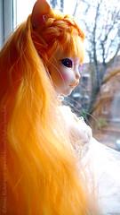 "Reaa ""-Where are the leaves?"" (Lawrichai) Tags: dollmore dreamingreaa reaa catishgirl catish catgirl bjd abjd bjdphoto bjdphotography doll dollphoto dollphotography orangehair pinkcorset lawrichai"