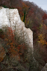 (kadircelep) Tags: nature beach germany rugen seaside chalk cliff trees autumn