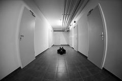 FDT #16.2 Which one to choose?! (EOS.5Dan) Tags: suisse switzerland vaud portes doors cave underground architecture batiment facedown tuesday 2017 5dmarkii 15mmfisheye noiretblanc blackandwhite bw nb monochrome