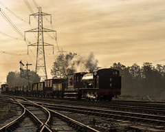 Morning Rays (4486Merlin) Tags: england europe goodstrain greatcentralrailway heritagerailways industrialsteam midlands railways transport unitedkingdom swithlandsidings leicestershire gbr 68067 hudswellclarke exwd lasthurrahgala