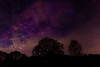 Milky Way over Wales (Jim Hughes Photography) Tags: milky way milkyway galaxy night sky stars clouds universe trees silhouette dark photography space light shine beautiful pretty views long exposure