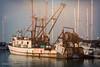 Tabitha (HSS) (buffdawgus) Tags: california californiacoast canon5dmarkiii canonef24105mmf4lisusm coastalcalifornia fishingboat lightroom6 pacificcoast pillarpoint pillarpointharbor princeton princetonbythesea rustycrusty sanmateocounty sanmateocountycoast topazsw trawler westcoast