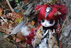 .: Fenris :. (.: Miho :.) Tags: dal daldoll doll dolls pullip pullipdoll fc nenndolls groovedoll junplanning obitsu parabox