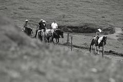 Cavalgada do Sindicato Rural de Itauçu (0241) (Jorge Belim) Tags: cavaleiro gente pessoa canoneos7d 70200 pb