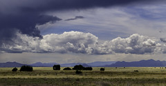 Santa Fe, NM (Jenny McNeilly) Tags: santafe landscape storm clouds nm