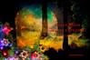SUPER MOON MERRY CHRISTMAS. (Viktor Manuel 990.) Tags: lunasuper supermoon superluna night noche forest bosque merrychristmas feliznavidad digitalart artedigital querétaro méxico victormanuelgómezg
