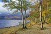Loch Earn Beach (eric robb niven) Tags: ericrobbniven scotland loch earn landscape dundee lochearnhead
