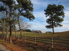 IMG_2029 (Dan Correia) Tags: marthasvineyard island fence shadows clouds barn horse 15fav topv111 topv333 addme500
