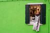 Bright_Green (and window...). (Anacronimo.) Tags: verde wall muro parete finestra window laces merletti pizzi