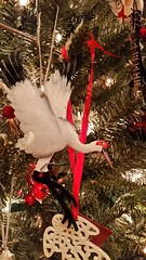 2017-12-07_11-44-53 (SweetMeow) Tags: christmas2016 christmastree christmas home longisland ornaments decorations whoopingcrane