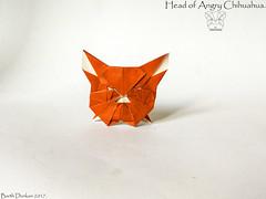 Head of Angry Chihuahua - Barth Dunkan. (Magic Fingaz) Tags: anjing barthdunkan chien chó dog hond hund köpek origami origamidog perro pies пас пес собака หมา 개 犬 狗