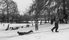 First real snow in about 5 years in St Albans. Verulamium Park (adamnsinger) Tags: verulamium park st albans michaels herftfordshire snow sledge slide 50mm summicron asph apo