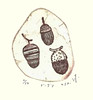 Oak acorns (Japanese Flower and Bird Art) Tags: flower oak fagus fagaceae shiho murakami modern intaglio print japan japanese art readercollection
