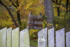 I balanced an old bucket on a fence.... (crabsandbeer (Kevin Moore)) Tags: autumn fall jerusalemmillvillage jerusalemmills bridge coveredbridge fence foliage landscape leaves maryland nature rural bucket golden yellow history shallowdof dof goldenhour