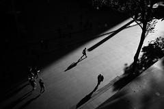 Circular Quay, Sydney (bigboysdad) Tags: circularquay australia blackandwhite bw monotone monochrome silhouette sydney ricoh gr 28mm