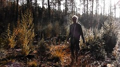 musing in the woods (Mattijn) Tags: forest woods musing musicvideo song autumn fall herfst mushy damp