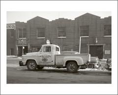 Vehicle Collection (8053) - Dodge (Steve Given) Tags: motorvehicle automobile workingvehicle truck pickup dodge