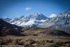 Owens Valley-108 (Denise Noelle Photography) Tags: owensriver bishopca sierranevadamountains monolake lonepine junelake mammothlakes