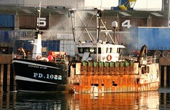 Evening Star (calzer) Tags: eos saturday morning october canon catch 1022 pd rusty evening star aberdeen fishing boat