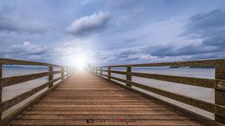 Seebrücke / Pier