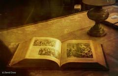 The Book (HSS) (buffdawgus) Tags: antique canon5dmarkiii canonef24105mmf4lisusm humbug lightroom6 malakoffdiggins stilllife topazsw