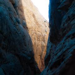 In Canyons 153 (noahbw) Tags: capitolreefnationalpark d5000 grandwash nikon utah abstract autumn canyon cliffs desert erosion landscape light lines minimal minimalism natural noahbw quiet rock shadow slotcanyon square still stillness stone