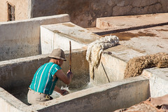 Hard Work at the Tannery (jennifer.stahn) Tags: travel travelphotography marokko morocco marocco marrakech marrakesch marrakesh tannery gerben gerberei work working dailylife nikon jennifer stahn