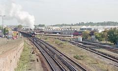 S15 828 at Eastleigh, 23 Sep 1995 (Ian D Nolan) Tags: railway eastleighstation 35mm epsonperfectionv750scanner s15 828 460z lswr sr railtour station