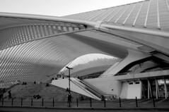 Station Liège Guillemins MV