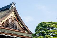 Nijo Castle (EwanHarris) Tags: japan kyoto imperial palace nijo castle bamboo arashiyama forest tree trees japanese fushimi inari kinkaku ji golden temple