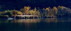 Kalterer See (re1107) Tags: kalterersee lagodicaldaro südtirol italy november