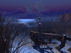 The Tranquility of Moonlight (cejalaval) Tags: secondlife sl scenic landscape beach bird moonlight windlight water tranquility sky