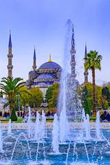 Blue Mosque (patrickburtin) Tags: