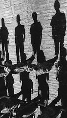 CELEBRANDO EL ANIV DE LA REV (FOTOS PARA PASAR EL RATO) Tags: siluetas sombras méxico jóvenes soldados desfile niños