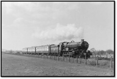 KGV at Bulmers of Hereford (john48677) Tags: hereford 6000 king george fifth sixties steam