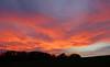21. Oktober 2017: Himmelsfeuer (Gertraud-Magdalena) Tags: herbst oktober himmel sky abendhimmel abendrot rot red rosso