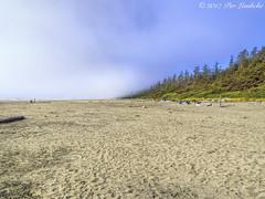 Long Beach Fog I (Per@vicbcca) Tags: em5 olympus vancouverisland britishcolumbia canada pacificrimnationalparkreserve longbeach