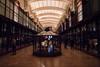 Muséum d'histoire naturelle (francoisjouffroy) Tags: panasonic gh5 test museum histoire naturelle paris animals animales lion girafe ours