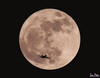 super moon 2017 (Sam Petar) Tags: moon baghdad black super airplane sky iraq nikon lightroom light