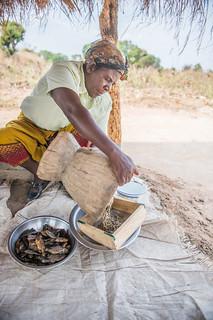 A woman pouring fish powder, Zambia. Photo by Chosa Mweemba.